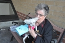 Blessing of Pets 2012_4